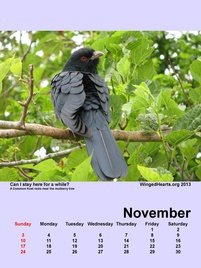 Winged Hearts Calendar 2013